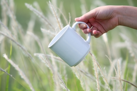 hand with coffee cup in reeds field  Stock Photo - 20980541