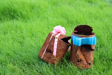 couple of rusty can with ribbin on young grass,like a sign of  forever love    photo