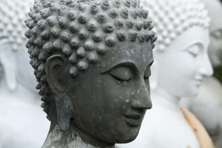 buddha face: buddha face Stock Photo