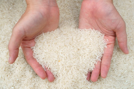 cupped hands: hand holding jasmine rice