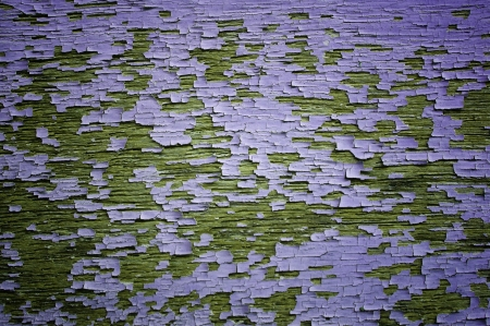 purple peeling painted on wooden wall  photo
