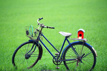 colorful bird house on old bicycle. photo