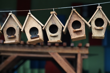 bird house: wooden bird house.