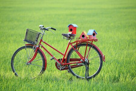 colorful bird house on classic bicycle  photo