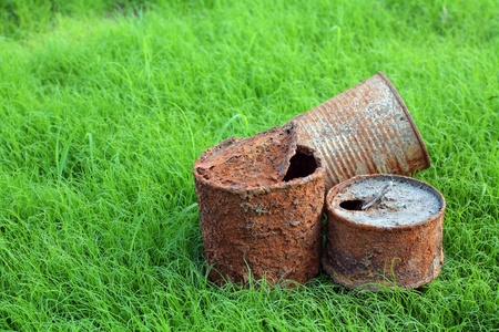 rusty can on young grass  photo
