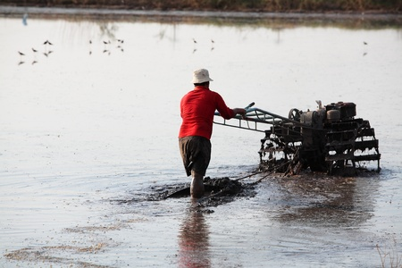 A man working with a handheld motor plow in a rice field from Thailand  photo
