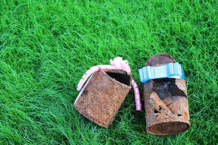 couple of rusty can with ribbon on young grass,like a sign of  forever love    photo