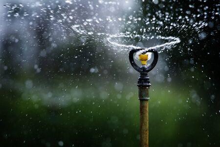 garden fountain: water sprinkler  Stock Photo