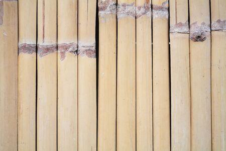 bamboo wall texture  photo
