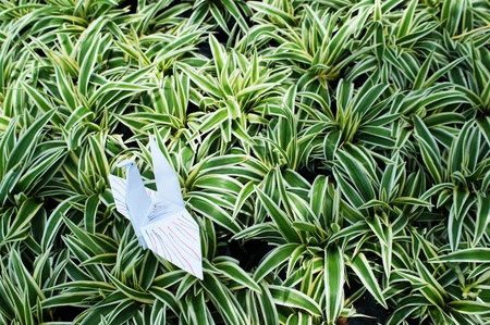 colorful origami bird on pattern of plant  photo