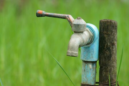 water tap with green background                               photo