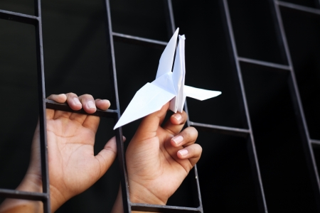 hand in jail showing origami bird Stock Photo - 21282189