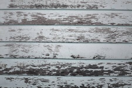 Peeling paint on weathered wood as a detailed background image photo