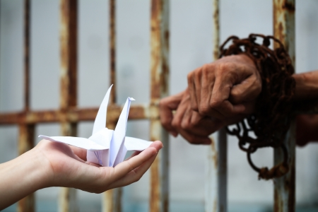 girl give origami bird for prisoner in jail  photo