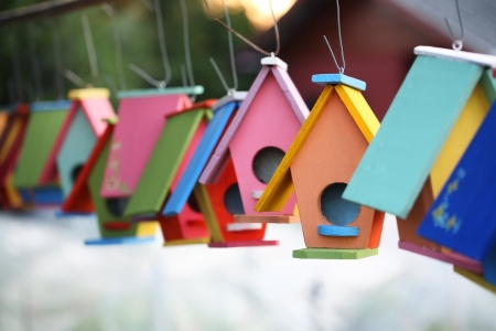 wooden house: colorful bird house  Stock Photo