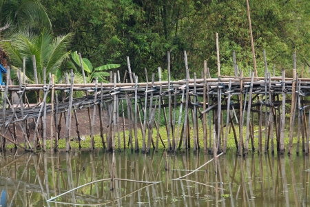 old bamboo bridge  photo