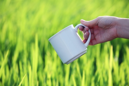 hand holding coffee cup with green paddy field background  photo