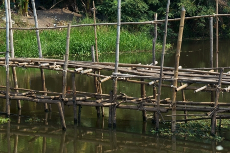 bamboo bridge across river. photo