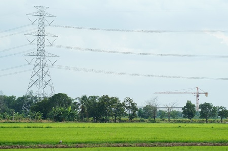over voltage: electric tower over paddy field  Stock Photo