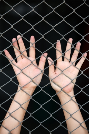 hand in jail  photo