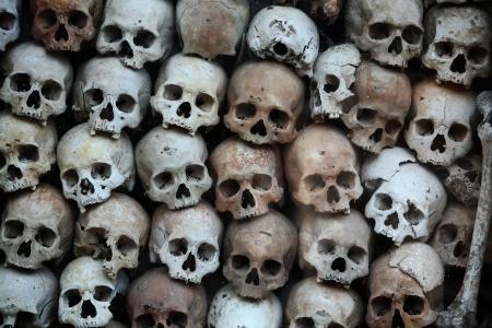 skull pattern  photo