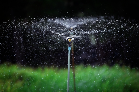 water sprinkler photo