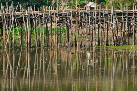 bamboo bridge crossing river                               photo