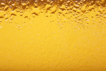 close up of beer  photo