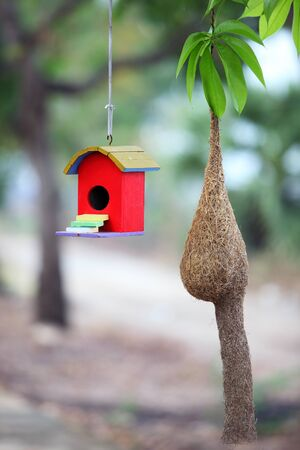 white bird: colorful bird house with bird nest Stock Photo