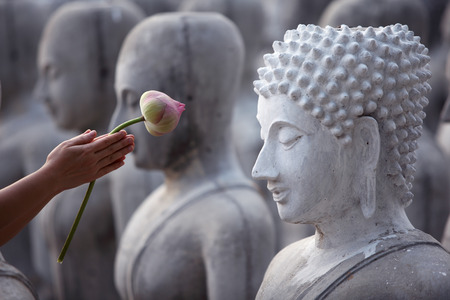 hand give respect by lotus flower to buddha image photo
