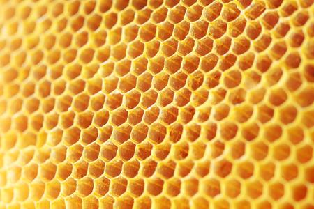 golden color honey comb as background. Archivio Fotografico