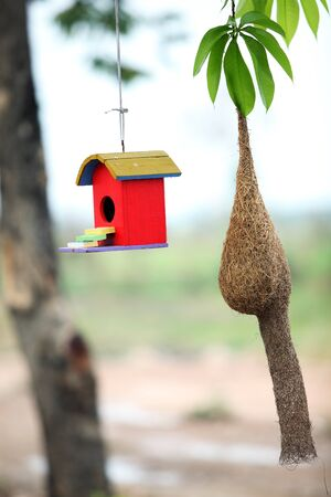 summer house: colorful bird house with bird nest Stock Photo