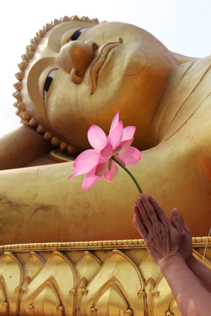buddha image: hand give resect by lotus flower to buddha image Stock Photo