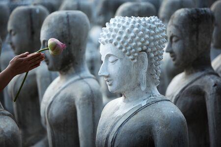 bouddha: main donne le respect par la fleur de lotus � l'image de Bouddha