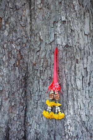 barking: colorful tradition garland on barking tree texture