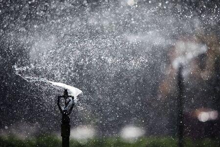 water sprinkler: refreshing water sprinkler