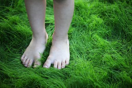 piedi nudi di bambine: piede i bambini sul prato verde