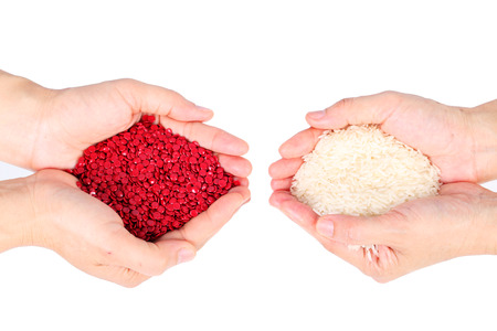 plastic pellets and rice grain on hand isolated on white background.
