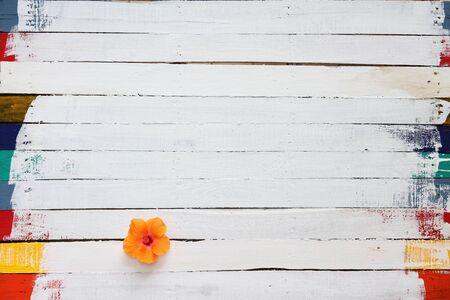 hibiscus: colorful hibiscus flower on grunge wooden panel as background Stock Photo