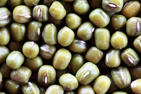 mung: close up of mung bean texture background