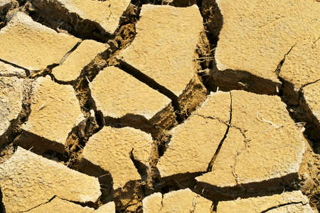 Cracked dry land textured background, waterless soil