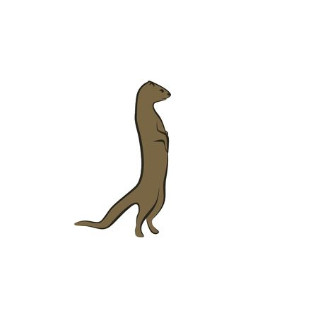 Mongoose vector illustration