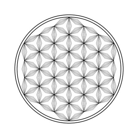 Flower of life vector  icon