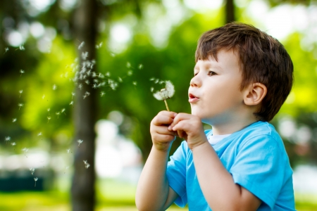 blowing dandelion: Cute 3 years old boy with dandelion outdoors at sunny summer day Stock Photo