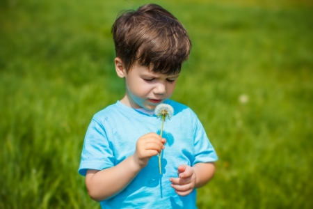 Little boy with dandelion on meadow photo