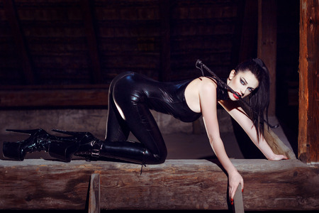 Beautiful fetish model kneeling in cat pose, seduction photo