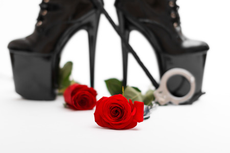 Rose with dominatrix equipment, isolated on white background photo