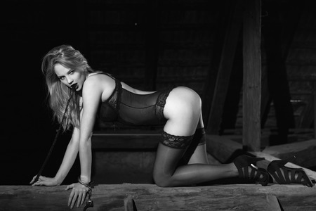 sex toys: Sexy blonde woman in underwear kneeling on timber with whip, black and white, bdsm Stock Photo