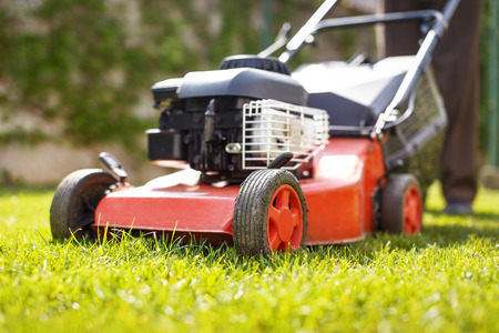 Man cut grass with lawnmower at backyard closeup, outdoor works Stock Photo