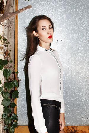 supermodel: Brunette supermodel posing at iron door, high fashion Stock Photo